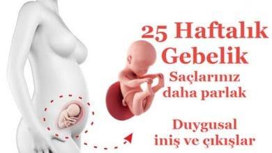 Photo of Hamilelikte 25 Haftalık Gebelik Bebek Kilosu