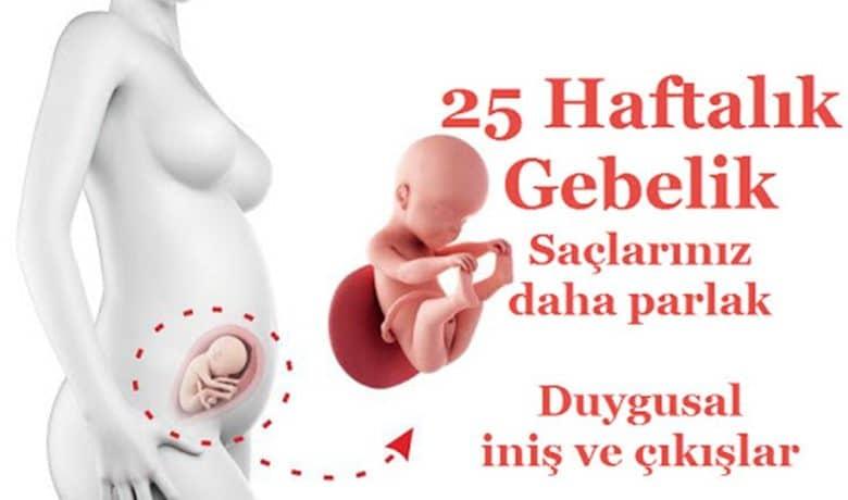 hamilelikte-25-haftalik-gebelik-bebek-kilosu